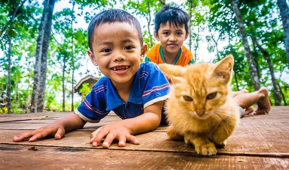 2 children with a maine coon kitten