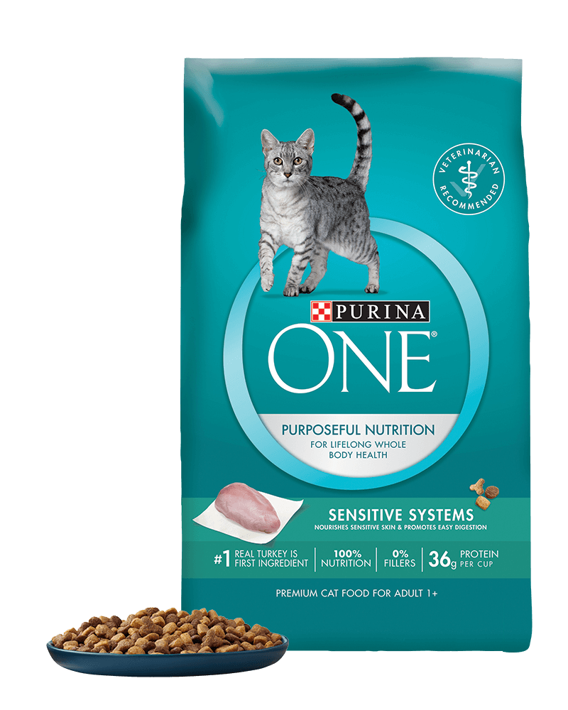 purina one sensitive systems for a maine coon