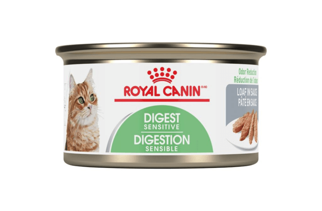 royal canin cat digest sensitive loaf for a maine coon