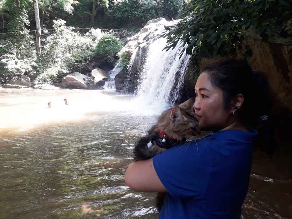 Alita the Maine Coon picked up by waterfall