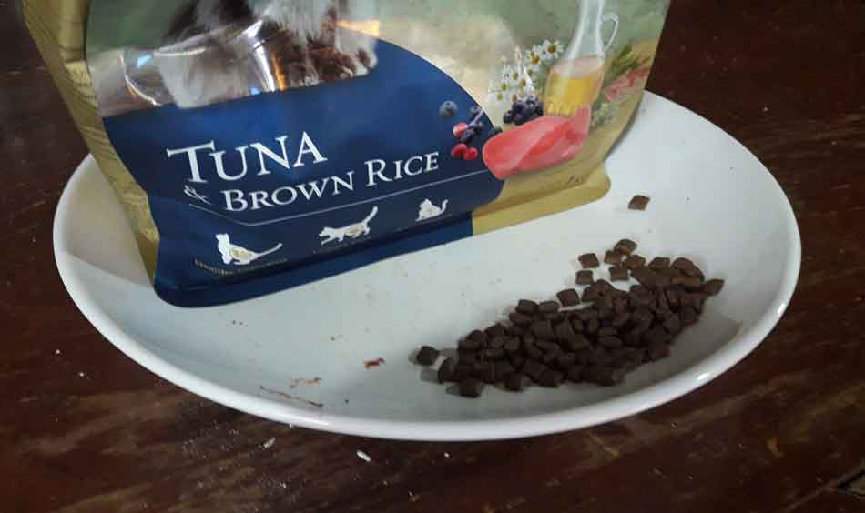 a bag of maine coon dry food
