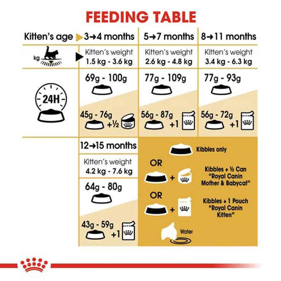 royal canin maine coon kitten feeding table