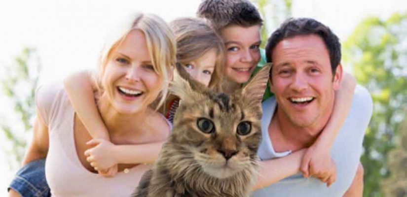 a maine coon in front of a family